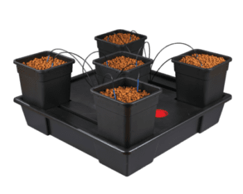 5 pot xxl dutch hydroponics. Black Bedroom Furniture Sets. Home Design Ideas